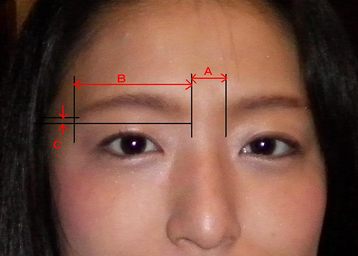 "Explanation image of data required when creating a custom-made type ""MAYUBI"" for both eyebrows"
